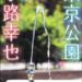 東京公園_小説